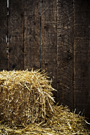 wood agricultural: Bale of straw and dark wooden background with vignette