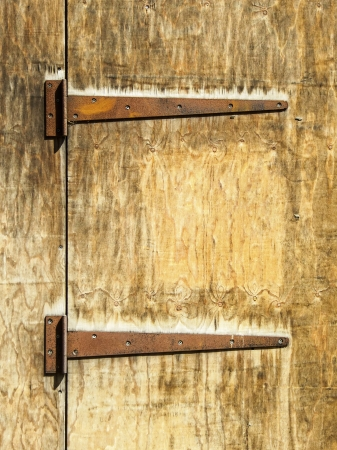 dilapidation: Two rusty hinges on an old wooden door
