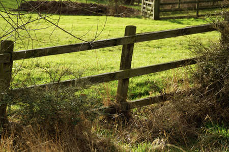enclosing: Wooden fence enclosing a meadow by a sunny winter day Stock Photo