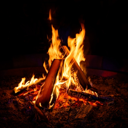 campfire: Camp fire in the night