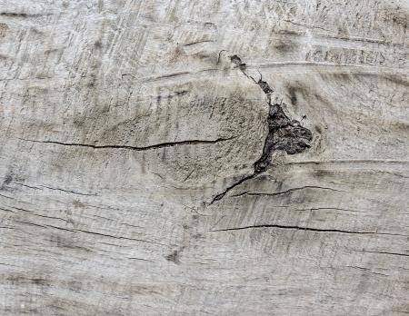 node: Node on a wood plank