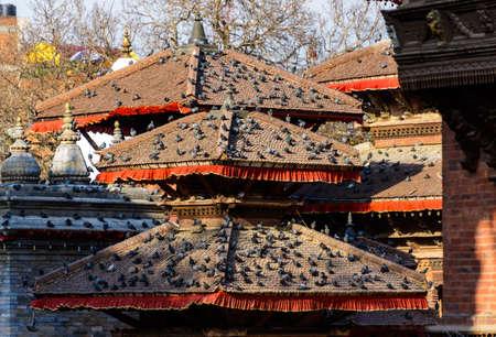 kathmandu: Pigeons on the roof of temples in Durbar Square in Kathmandu, Nepal Stock Photo