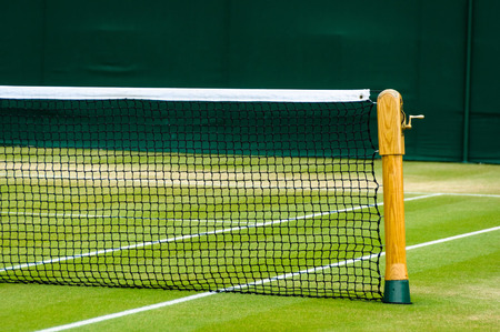 Lawn tennis court and net