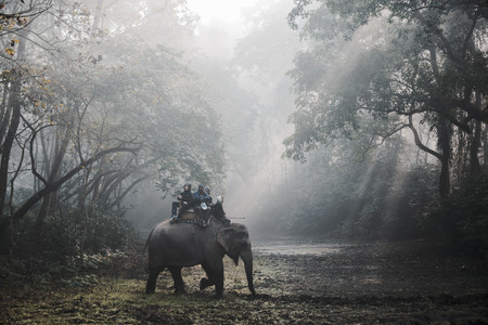 Sauraha, NEPAL - CIRCA december 2014: Toeristen doen van een olifant safari in Chitwan National Park. Redactioneel
