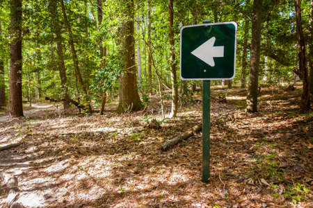 wooden trail sign: Arrow sign in a forest in Virginia, USA