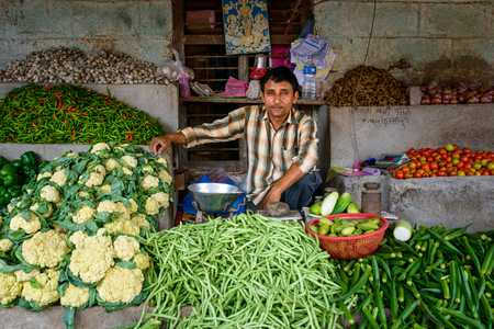 business asia: TULSIPUR, NEPAL - CIRCA JULY 2015: A vegetable seller at Tulsipur market. Editorial