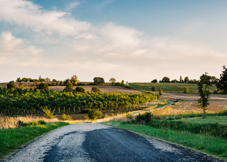 emulation: Country road in Gers, France. Film emulation filter. Stock Photo