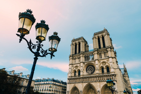emulation: Notre-Dame cathedral and a street lamp in Paris, France. Film emulation filter applied.