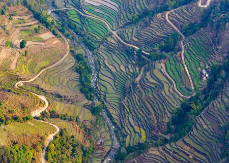 포카라, 네팔 근처 논 필드의 공중보기