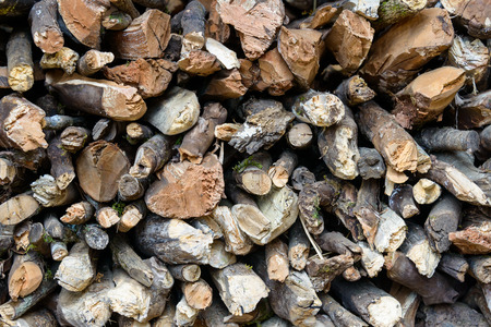 Closeup of a stere of logs Zdjęcie Seryjne