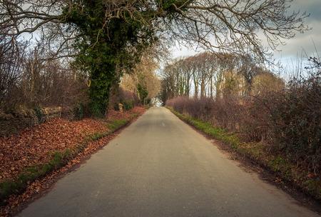 recedes: Road in rural Britain in winter Stock Photo