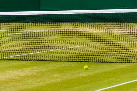 Tennis ball on a lawn tennis court
