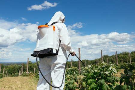 Unkrautbekämpfung. Thema der industriellen Landwirtschaft. Mann, der giftige Pestizide oder Insektizide auf Obstanbauplantage sprüht. Natürliches hartes Licht am sonnigen Tag.