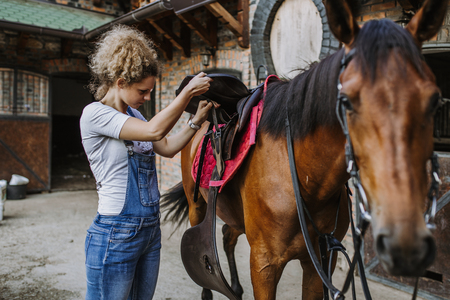 Young woman taking care of her beautiful horse. Reklamní fotografie