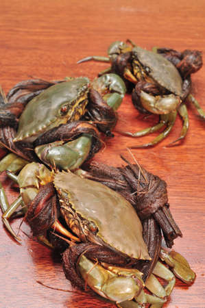 confrontation: Crab from the Mekong delta on a confrontation