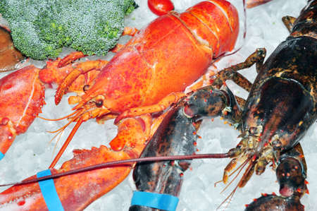lobster tail: Frozen lobster with ice on sale Stock Photo