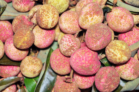 litchi: Litchi fruit Stock Photo