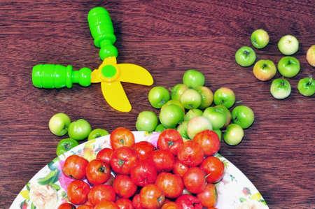 bulling: Malpighia fruta