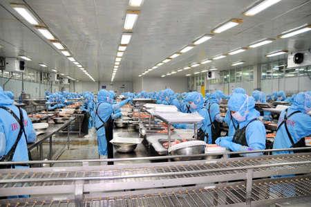 DA NANG, VIETNAM - 2015 년 3 월 6 일 : 노동자들은 새우를 수출하기 위해 해산물 처리 공장에서 일하고 있습니다.