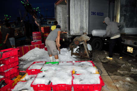 hon: NHA TRANG, VIETNAM - FEBRUARY 21, 2013:  Workers are grinding ice to preserve tuna fish in the Hon Ro seaport, Nha Trang city
