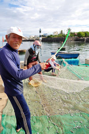 forage fish: QUANG NGAI, VIETNAM - JULY 31, 2012: An old fisherman is removing anchovies fish from his fishing net to begin a new working day in Ly Son island