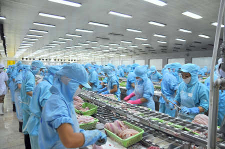 그 수, 베트남 -2011 년 7 월 1 일 : 노동자 베트남에서 메콩 델타 해산물 공장에서 pangasius 메기 filleting 수 있습니다.