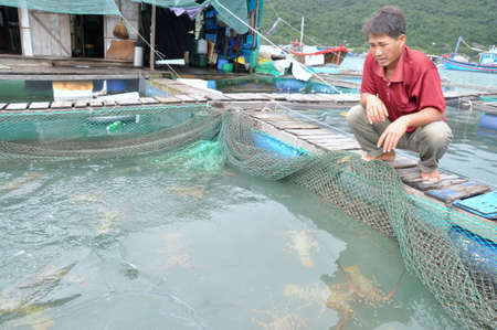 lobster pot: PHU YEN, VIETNAM - DECEMBER 21, 2011: A farmer with his lobster farming cage in the Vung Ro bay in Vietnam Editorial