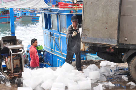forage fish: NHA TRANG, VIETNAM - FEBRUARY 21, 2013:  Workers are grinding ice to preserve tuna fish in the Hon Ro seaport, Nha Trang city