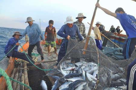 trawl: NHA TRANG, VIETNAM - MAY 5, 2012: Fishermen are collecting tuna fish caught by trawl nets in the sea of the Nha Trang bay Editorial
