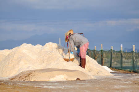 living unit: NINH HOA, VIETNAM - MARCH 2, 2012: Vietnamese women are burdening hard to collect salt from the extract fields to the storage fields