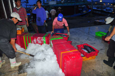 NHA TRANG, VIETNAM - FEBRUARY 21, 2013: Porters at the Hon Ro seaport are loading baskets of fishes onto the truck to a local processing plant in Nha Trang city Stock fotó - 41420245