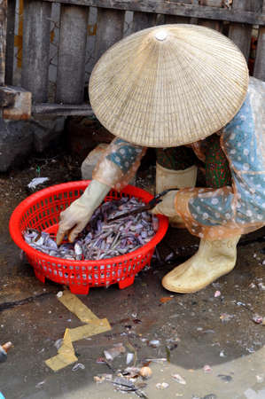 NHA TRANG, VIETNAM - OCTOBER 5, 2011: A Woman is selling forage fishes at a local seafood market in Vinh Luong port
