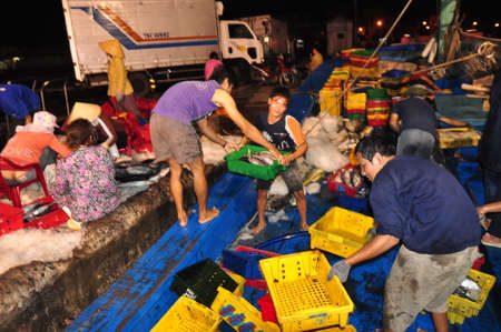 forage fish: NHA TRANG, VIETNAM - FEBRUARY 21, 2013: Fishermen are collecting and sorting fisheries after a long day fishing in the Hon Ro seaport, Nha Trang city