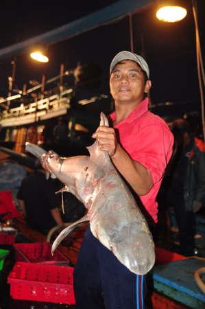forage fish: NHA TRANG, VIETNAM - FEBRUARY 21, 2013: A fisherman is showing his sharks at the Hon Ro seaport, Nha Trang city