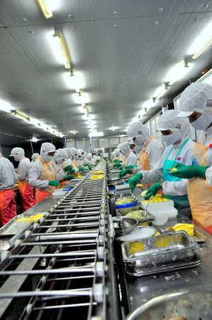 alimentos congelados: HO CHI MINH, Vietnam - 03 de octubre 2011: Los trabajadores están trabajando duro en una línea de producción en una fábrica de mariscos en la ciudad de Ho Chi Minh, Vietnam Editorial