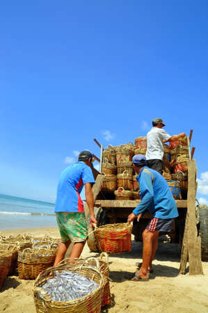 uploading: LAGI, VIETNAM - FEBRUARY 26, 2012: Local fishermen are uploading fisheries onto the truck to the processing plant in Lagi beach