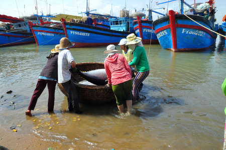 exploited: TUY HOA, VIETNAM - FEBRUARY 28, 2012: Local fishermen are transporting tuna fish from their vessels to the stretcher and bring it to the testing house in Tuy Hoa seaport Editorial