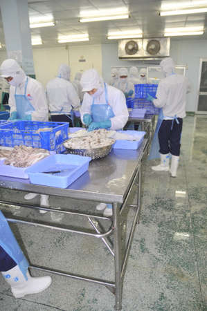HO CHI MINH CITY, VIETNAM - OCTOBER 3, 2011: Workers are cutting raw fresh materials in a seafood factory in Ho Chi Minh city, Vietnam Éditoriale