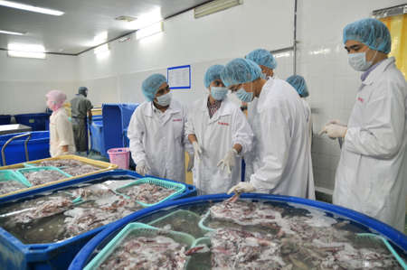 antidumping: PHAN THIET, VIETNAM - DECEMBER 11, 2014: Foreign buyers are visitting a seafood factory in the Central of Vietnam
