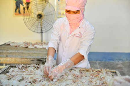 countervailing duty: PHAN THIET, VIETNAM - DECEMBER 11, 2014: Workers are peeling dry squids for exporting in a seafood factory in Vietnam