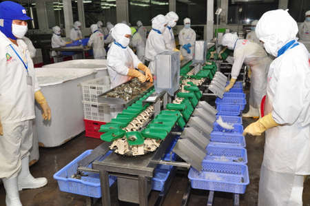 HAU GIANG, VIETNAM - JUNE 23, 2013: Workers are working with a shrimp sizing machine in a processing plant in Hau Giang, a province in the Mekong delta of Vietnam