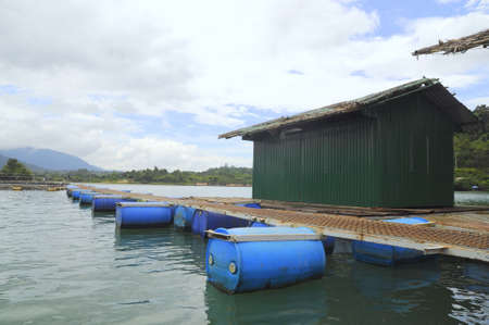 feed the poor: LAM DONG, VIETNAM - SEPTEMBER 2, 2012: Sturgeon cage farming in Tuyen Lam lake in Da Lat city Editorial