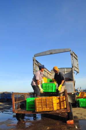 LAGI, VIETNAM - FEBRUARY 26, 2012: Workers are loading forage fish onto the truck to the feed mill in Lagi seaport Editorial