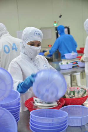 VUNG TAU, VIETNAM - DECEMBER 9, 2014: Workers are packaging product for export in a seafood factory in Vietnam