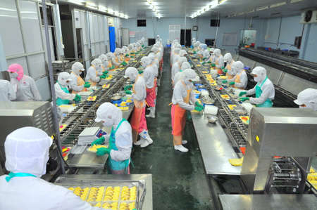 HO CHI MINH CITY, VIETNAM - OCTOBER 3, 2011: Workers are working hard on a production line in a seafood factory in Ho Chi Minh city, Vietnam