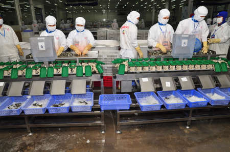countervailing duty: HAU GIANG, VIETNAM - JUNE 23, 2013: Workers are working with a shrimp sizing machine in a processing plant in Hau Giang, a province in the Mekong delta of Vietnam