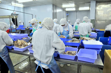 HO CHI MINH CITY, VIETNAM - OCTOBER 3, 2011: Workers are working hard in a seafood factory in Ho Chi Minh city, Vietnam