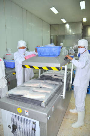 feed the poor: CAN THO, VIETNAM - JULY 1, 2011: Workers are vacuum packaging of pangasius catfish in a seafood factory in the Mekong delta of Vietnam Editorial