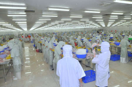 countervailing duty: TIEN GIANG, VIETNAM - MARCH 2, 2013: Workers are working in a seafood processing plant in Tien Giang, a province in the Mekong delta of Vietnam