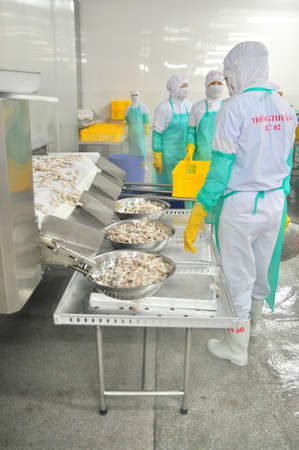 PHAN RANG, VIETNAM - DECEMBER 29, 2014: Workers are collecting frozen shrimps for exporting in a seafood factory in Vietnam